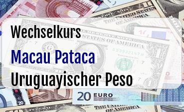 Macau Pataca in Uruguayischer Peso